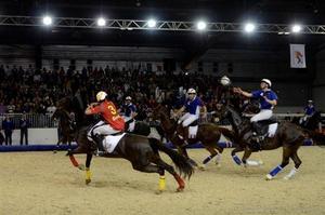 Coupe-du-Monde-FIHB-de-Horse-Ball-a-Montpellier-La-France-championne-du-Monde_large