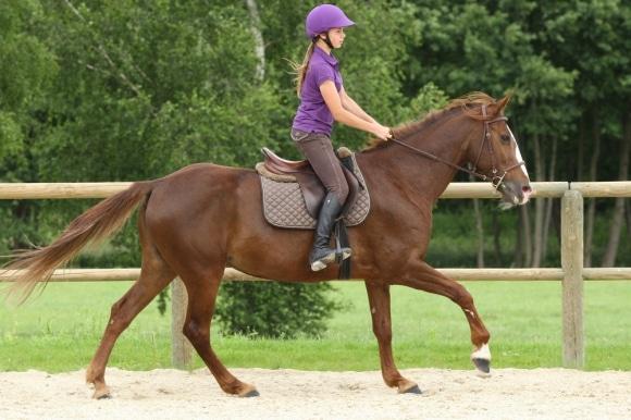 Se muscler grâce à l'équitation